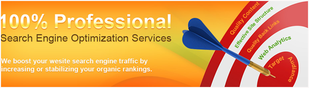 Search Engine Optimization Services in Ahmedabad